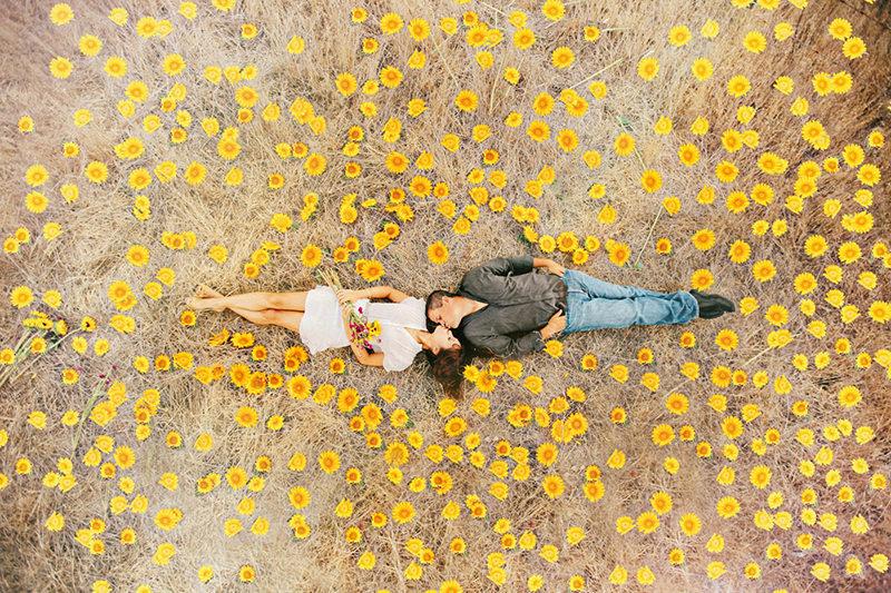 casal deitado no campo cheio de girassois