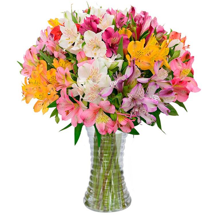 flor astromélia num jarro